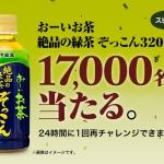 『おーいお茶 絶品の緑茶 ぞっこん320ML』 プレゼント!