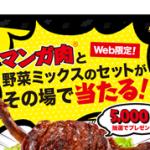 マンガ肉®と野菜ミックスのセットがその場で当たる! キリン メッツ コーラキャンペーン