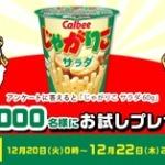 カルビー じゃがりこ サラダ 60g 1個 無料券プレゼント!